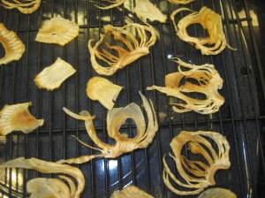 Crispy Fennel Chips